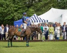 VO Polo Festival & Ball 2019-1023