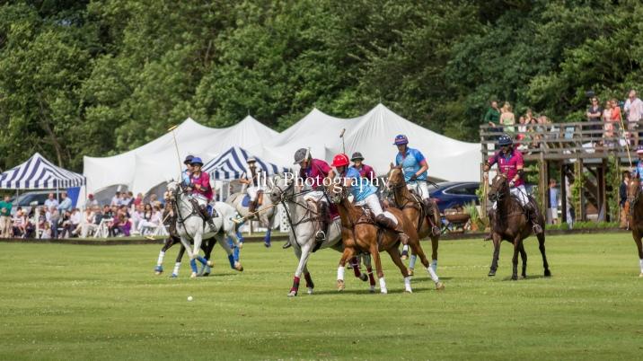 VO Polo Festival & Ball 2019-1062