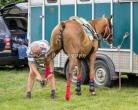 VO Polo Festival & Ball 2019-9848